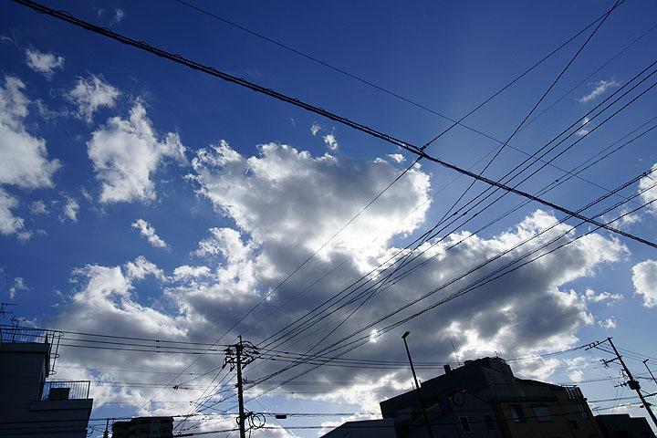 DSC01392.jpg