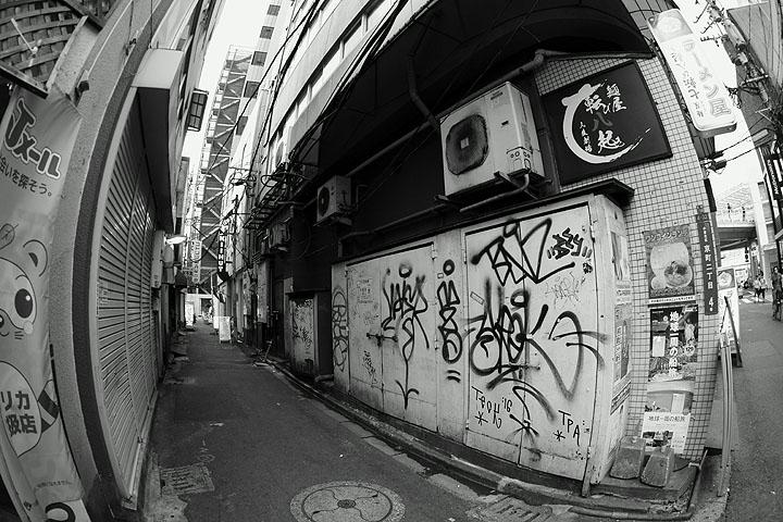 DSC09776.jpg
